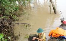 Tiếc nuối vương quốc ốc gạo Phú Đa ở Bến Tre