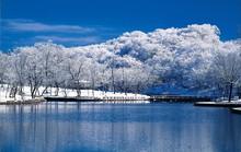 Ibaraki - điểm đến ở Nhật Bản 4 mùa không chán