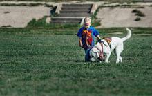 Cảm động tình bạn giữa chó và cậu bé tự kỷ