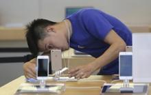 Người dùng Trung Quốc kêu trời vì iPhone 6 đột tử hàng loạt