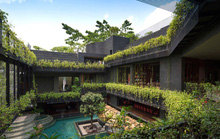 Vườn bách thảo trong ngôi nhà 4 tầng ở Singapore