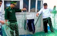 Quảng Trị: Ngư dân lại bị tàu Trung Quốc bắt nạt