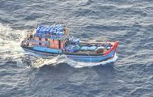 Đại sứ quán bảo hộ 30 ngư dân Việt Nam bị Úc bắt