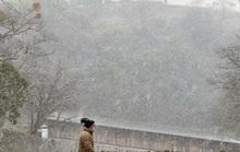 Thời tiết khắc nghiệt hoành hành khắp thế giới
