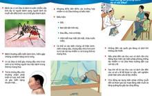 Bộ Y tế khuyến cáo thai phụ đối phó virus Zika