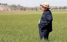 Triều Tiên cấm sử dụng điện thoại Trung Quốc