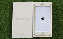 iPhone 7 sắp ra mắt, máy đời cũ chưa kích hoạt ồ ạt nhập về