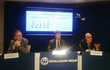 WB: Việt Nam cần tránh các thảm hoạ môi trường như vụ cá chết