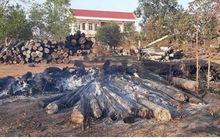 Điều tra vụ cháy hơn 100 lóng gỗ bị kiểm lâm tịch thu