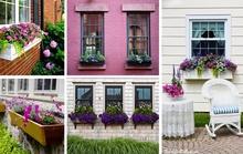 Những khu vườn đẹp dịu dàng bên khung cửa sổ