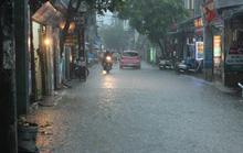 Sau đợt nắng nóng kỷ lục, Hà Nội mưa gió giông lốc đổ cây