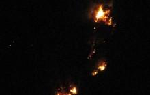 Cháy rừng thông 30 năm tuổi ở Thanh Hóa