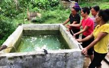 Chết lặng thấy 2 con nhỏ chết đuối trong bể nước gia đình