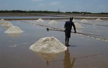 Giữ muối để làm gì?