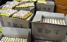 Một đêm bắt 18.000 quả trứng gà in chữ Trung Quốc
