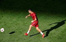 Gấu tiên tri báo điềm xấu cho Ronaldo và đồng đội