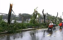 Mưa gió đe dọa nhiều tỉnh, thành