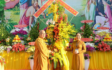 TP HCM tổ chức Đại lễ Phật đản