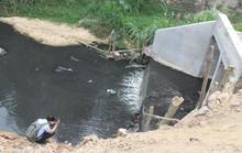 Sông, suối Đồng Nai kêu cứu!