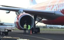 Máy bay hạ cánh khẩn vì bị chim chui vào động cơ