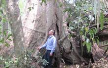 Tiếp sức rừng thiêng