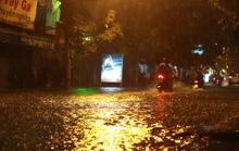 Bão số 14 gây mưa to gió lớn ở TP HCM