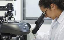 Tìm ra gen chủ giúp thai không bị sẩy
