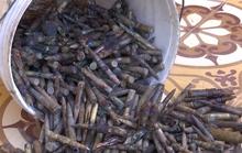Trục vớt quả ngư lôi cùng hàng trăm viên đạn chưa phát nổ