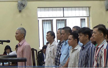 Bảy đại gia thủy sản hầu tòa
