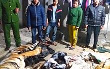 Phát hiện 2 cá thể hổ trong trang trại nuôi bò