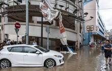 Chết kẹt trong bãi giữ xe vì bão Hato