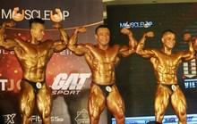 VMS Big Man: Giải thưởng siêu khủng, lực sĩ siêu nặng