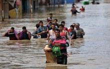 Liều mạng cứu lụt