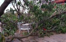 Gió đang rất mạnh ở Trường Sa