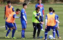 Đến 2020, bóng đá Việt vô địch khu vực 1-2 lần!