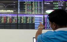 Nhiều nhà đầu tư số 0 ồ ạt mở tài khoản bắt đáy chứng khoán