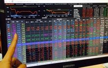 Đang ở đỉnh cao, VN-Index rớt thảm hơn 31 điểm