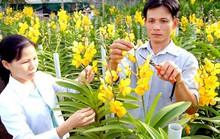 Đào tạo nhân lực nông nghiệp công nghệ cao