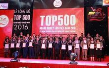 C.P. Việt Nam đứng thứ 18/500 doanh nghiệp lớn nhất năm 2016