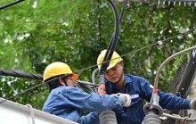 TP HCM cải thiện đáng kể việc tiếp cận điện năng