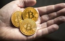 FPT thu học phí bằng bitcoin là chơi với lửa
