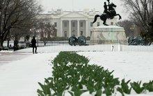 Kẻ đột nhập Nhà Trắng nhởn nhơ 15 phút trước khi bị bắt