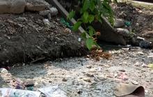 Ý thức kém tạo ra dòng kênh rác