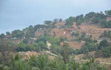 Đà Nẵng: Đình chỉ công trình khu nghỉ dưỡng trên núi Sơn Trà