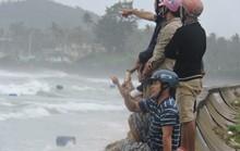 Từ Bình Định đến Đà Nẵng: Cây ngã la liệt, nhiều khu vực bị lũ chia cắt