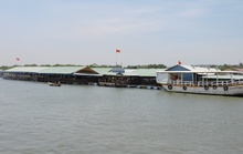Bà Rịa-Vũng Tàu ban hành quy định quản lý nhà hàng nổi
