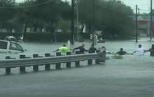 Bão Harvey: Sợi xích người cứu nạn nhân trong nước lũ