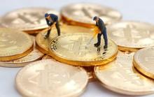 """Những """"thây ma Bitcoin"""" tại Hàn Quốc"""