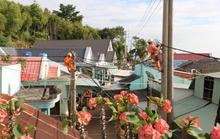 Người dân trên đảo Sơn Hải được sử dụng điện lưới quốc gia