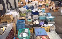Công ty ma nhập khẩu 2 container hàng lậu